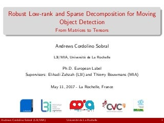 PhD Thesis Defense Presentation: Robust Low-rank and Sparse Decomposition for Moving Object Detection - From Matrices to Tensors