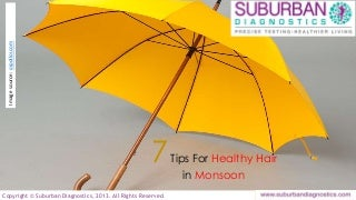 Tips for Hair Care During Monsoon - Suburban Diagnostics