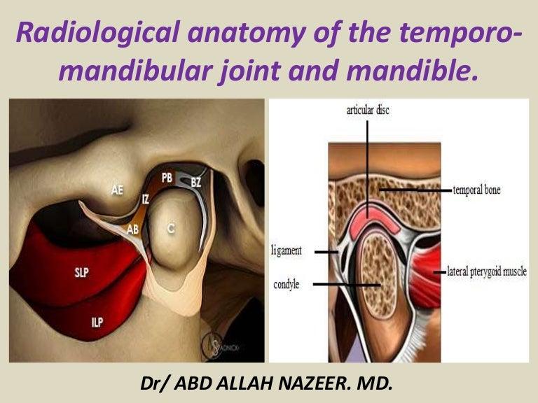 Presentation1pptx Radiological Anatomy Of The Temporo Mandibular Jo