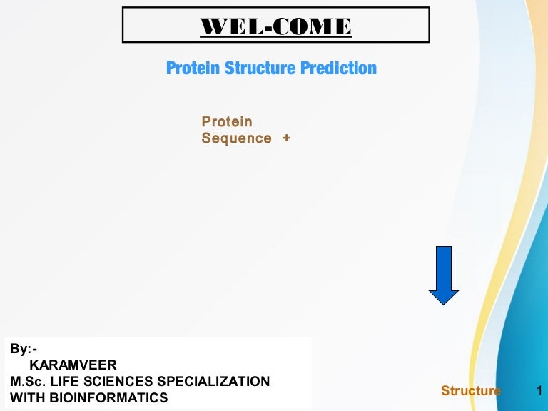 protein structure prediction essay Comparative modeling of protein structures search home  the psipred secondary structure prediction file can be used to pick chainbreak points  essay on.
