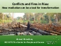Conflicts and Fires in Riau: How mediation can be a tool for transformation