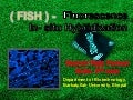 fish- Fluorescence in situ hybridization