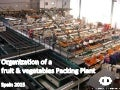 Fruit packing line