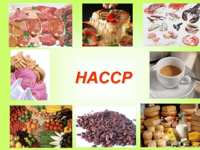presentazione haccp - Procedure Haccp Cuisine