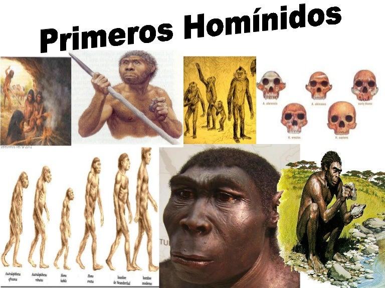 Primeros homínidos