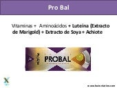 Fuxion - Probal