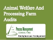 Process Management Audit  Programs For Animal Welfare