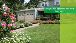 Expert Lawn Care Murray, UT Residents Suggest