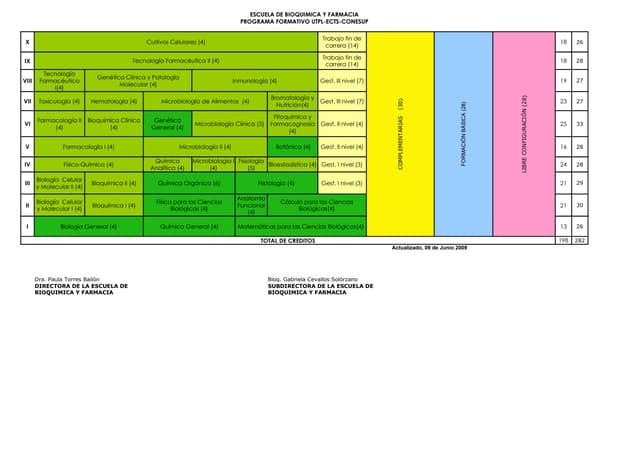 Programa Formativo Ebqf Conesup