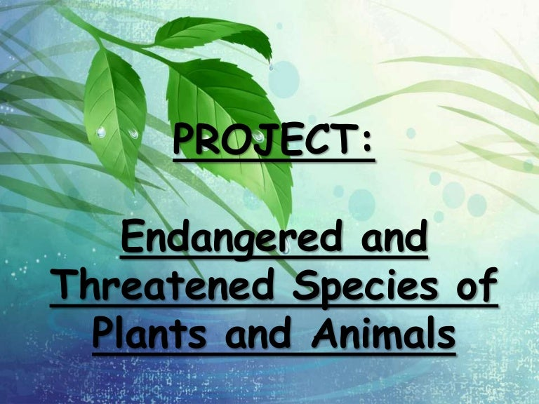 Endangered And Threatened Plants And Animals