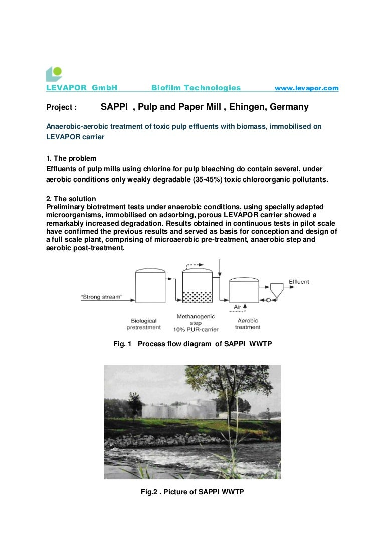 Project Sappi Pulpand Paper Effluent Process Flow Diagram Wwtp