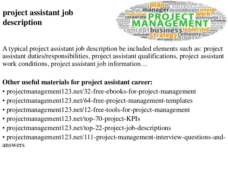 Project Assistant Job Description