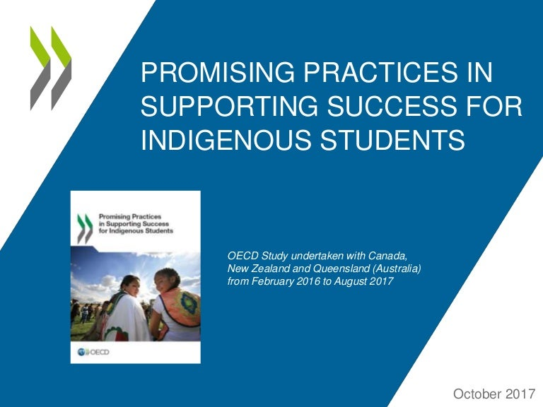 Promising Practices in Supporting Success for Indigenous Students