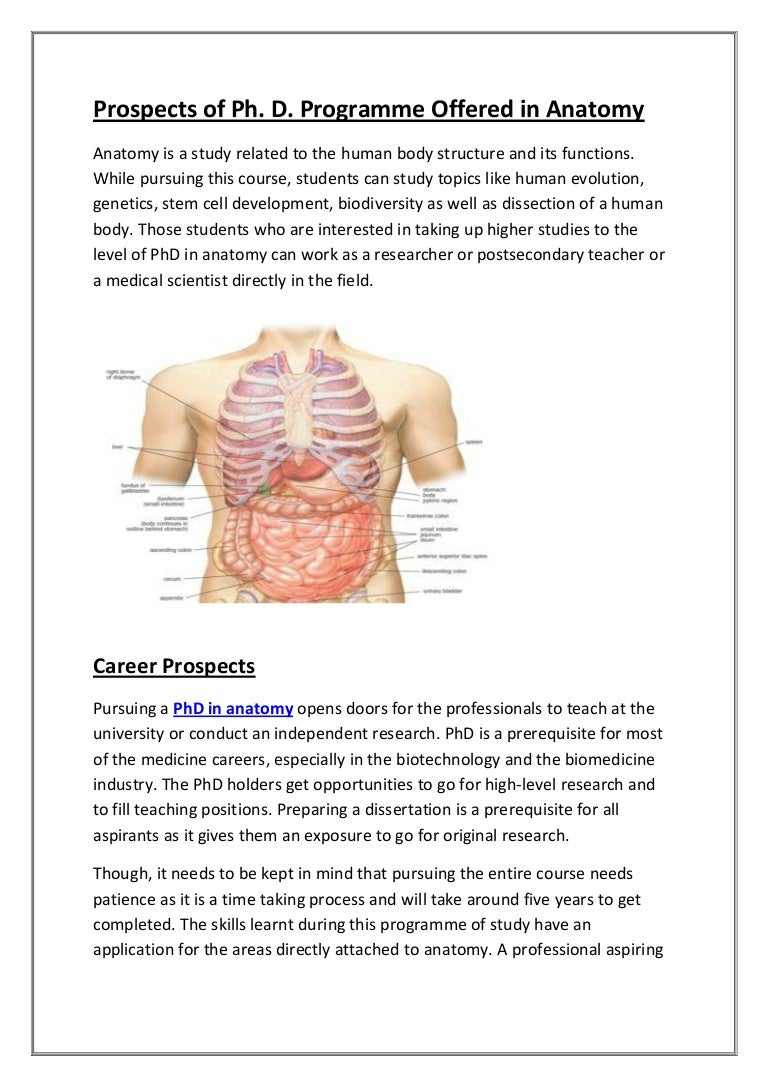 Prospects of phd in anatomy