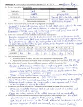 Worksheets Protein Synthesis Worksheet Answer Key collection of protein synthesis worksheet answer key sharebrowse ib review 2 7 3