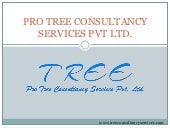 Pro tree consultancy services pvt. ltd. personal website