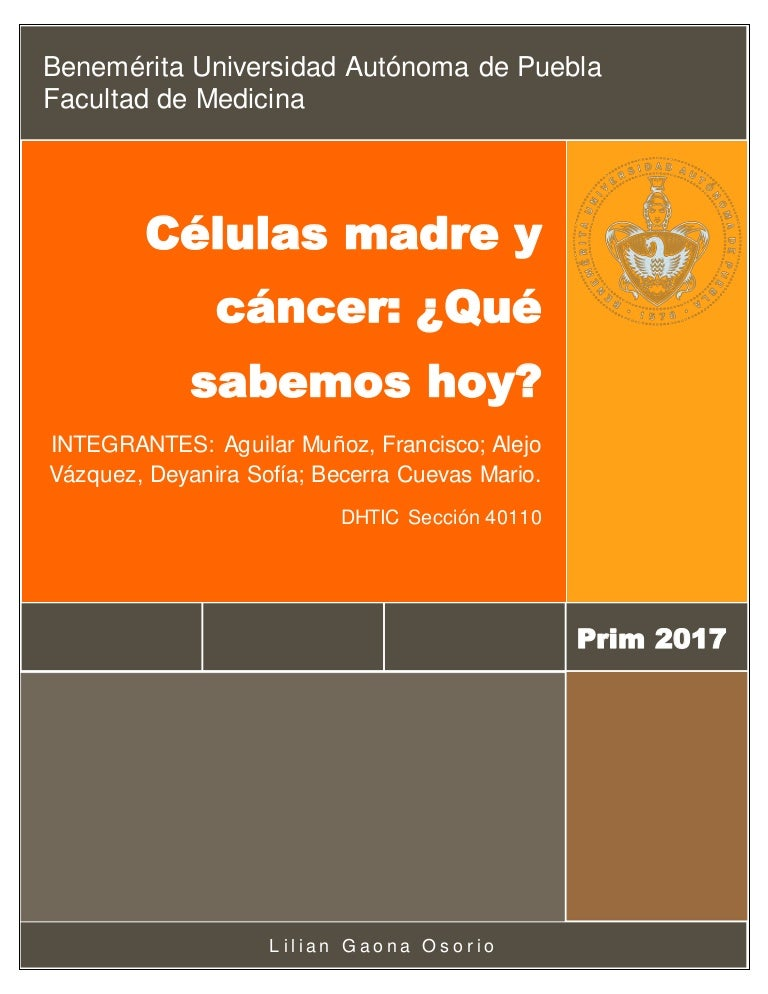 células madre de células madre para el cáncer de próstata