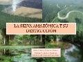 La Selva Amazónica y su destrucción