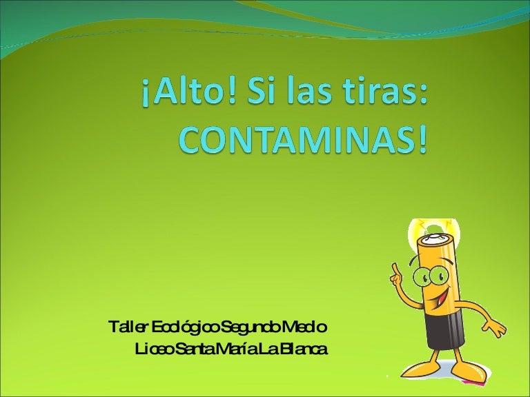 Proyecto ecologico pilas for Tamanos de pilas