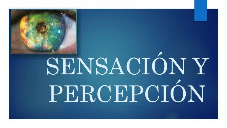 Sensacion Y Percepcion Psicologia Epub