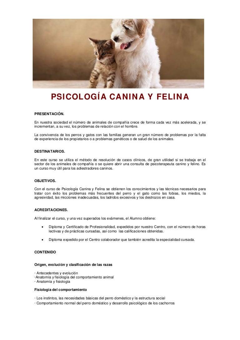 Psicologia canina y felina