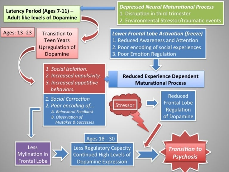 Psychosis: Diathesis Stress Model (transition to adult ...