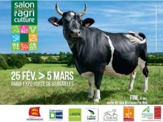 Une Rencontre Coquine Avec Une Vieille Pute 42 Ans Pour Une Relation Coquine En Auvergne