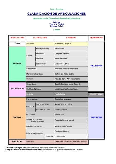 Subclasificacion de las articulaciones diartrosis