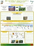 Poster22: Quesungual slash & mulch agroforestry systems and eco-efficient philosophy of life