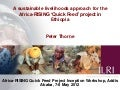 A sustainable livelihoods approach for the Africa-RISING 'Quick Feed' project in Ethiopia