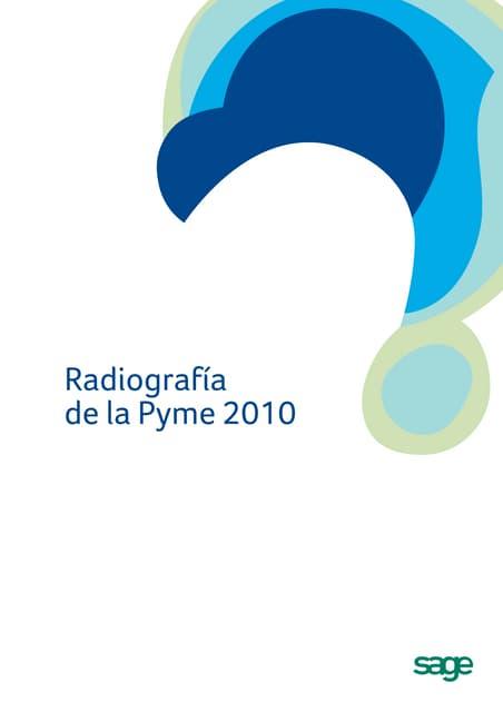 Radiografia de la_pyme_2010