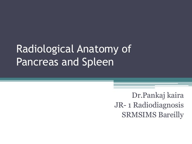 Radiological Anatomy Of Pancreas And Spleen