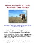 Raising Beef Cattle For Profit - Why It Is A Good Venture