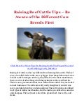 Raising Beef Cattle Tips – Be Aware of the Different Cow Breeds First