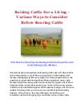 Raising Cattle For a Living - Various Ways to Consider Before Rearing Cattle