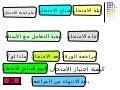 الأستاذ طارق