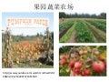 果园蔬菜农场