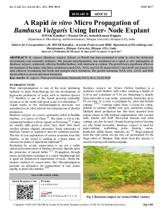 A Rapid in vitro Micro Propagation of Bambusa Vulgaris Using Inter- Node Explant