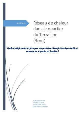 Rapport ENTPE : Réseau de chaleur dans le quartier du Terraillon (Bron)