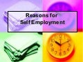 Reasons for self employment