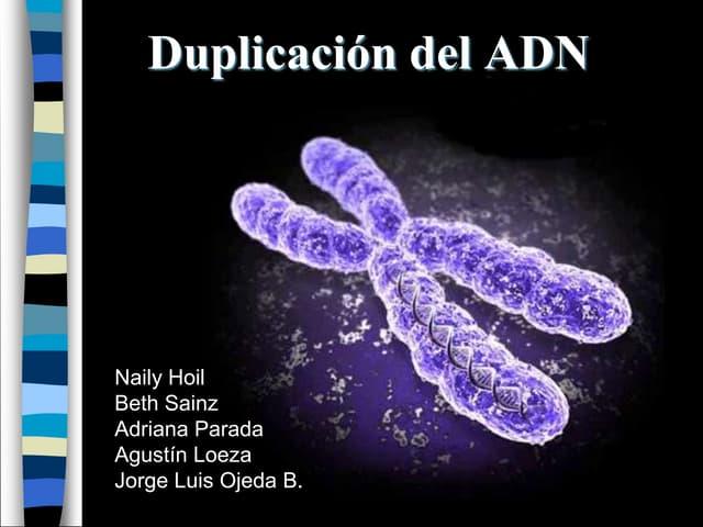 Recombinación, transposones y retrovirus