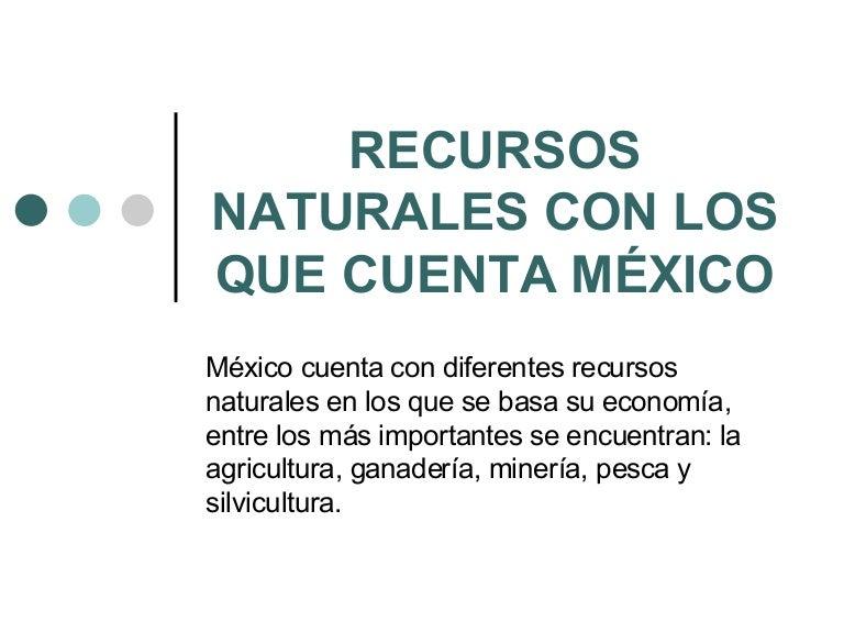Recursos naturales con los que cuenta m xico - Aromatizantes naturales para la casa ...