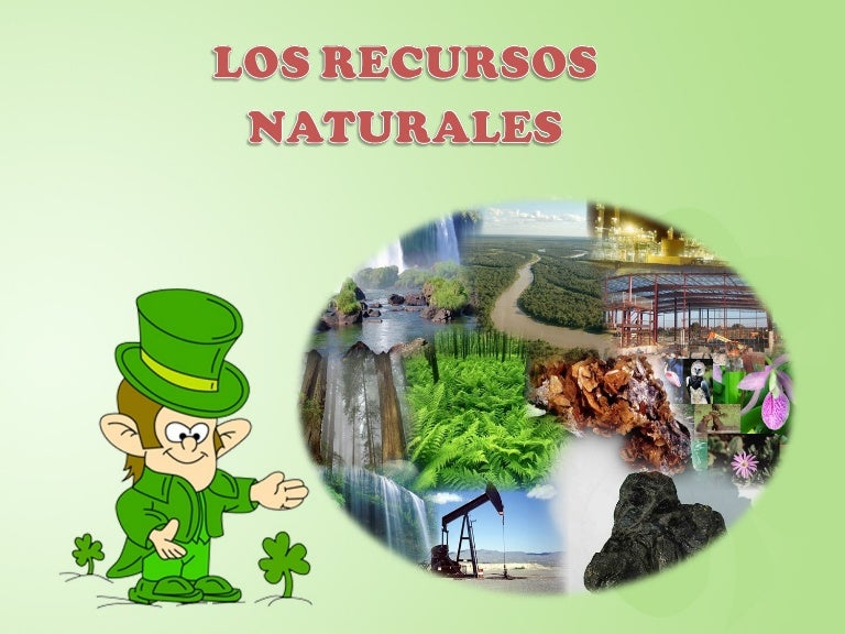 Recursos naturales - Aromatizantes naturales para la casa ...