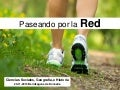 Paseando por la Red