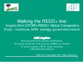 Walking the REDD+ line: Insights from CIFOR's REDD+ Global Comparative Study