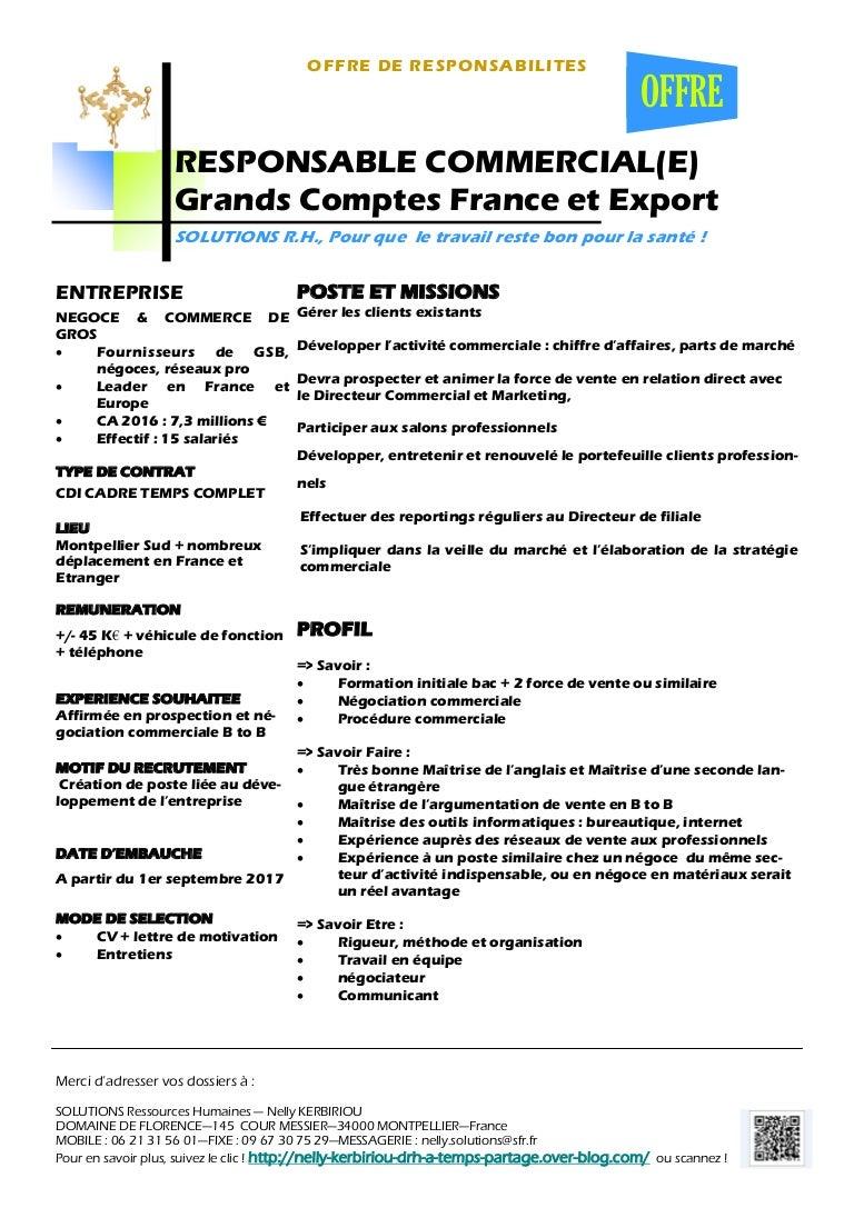 Responsable Commercial E Grands Comptes France Et Export