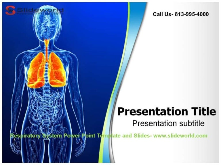 Anatomy ppt templates free download brettfranklin respiratory system powerpoint template powerpoint templates toneelgroepblik Images
