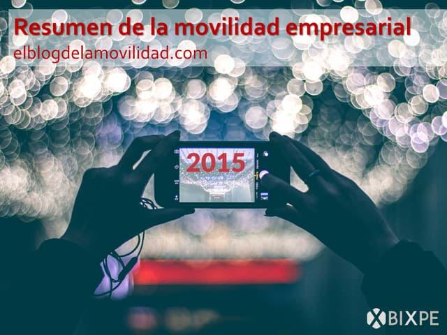 Resumen de la movilidad empresarial 2015