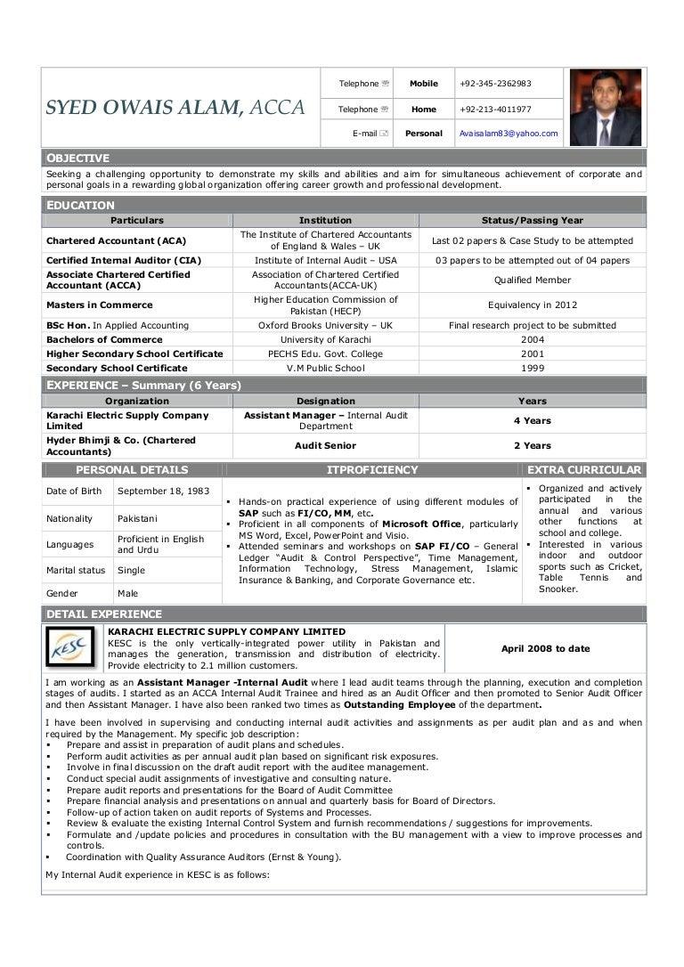 external auditor sample resume sample professional profile for resume