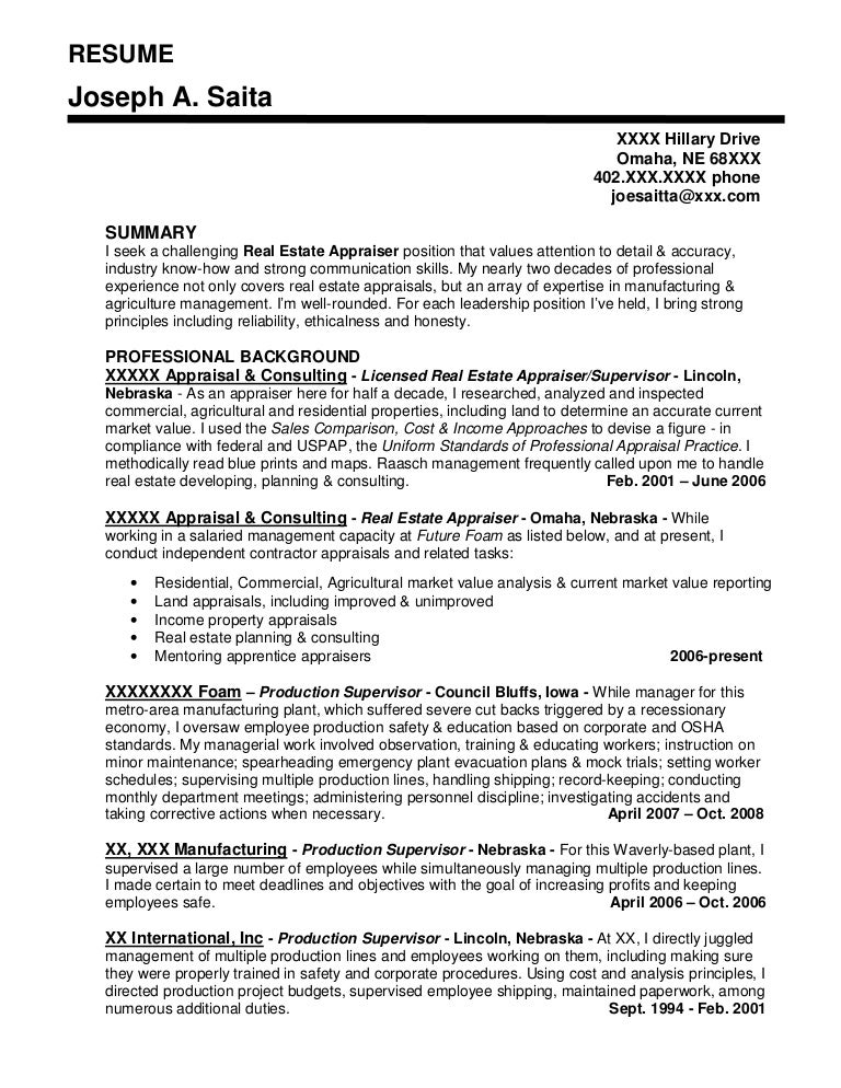 resume sample - Professional Resume Sample For Real Estate Sales
